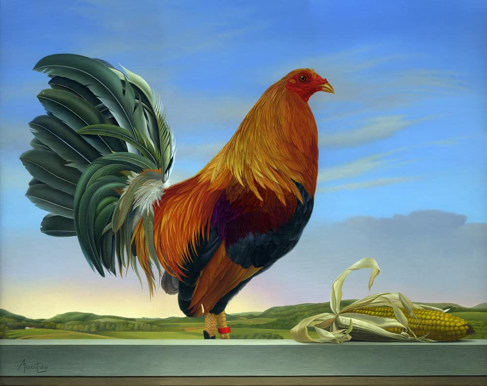 Marco Tulio Rooster
