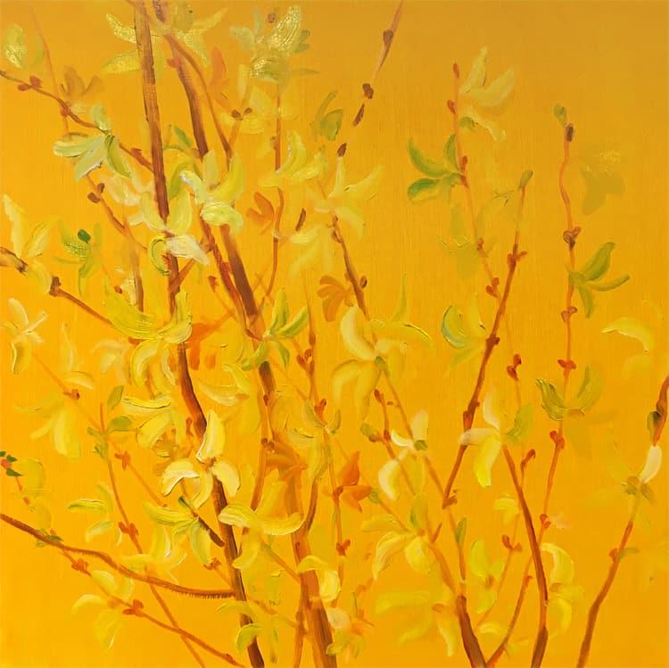 Krista Johnson Yellow Forsythia 16x16