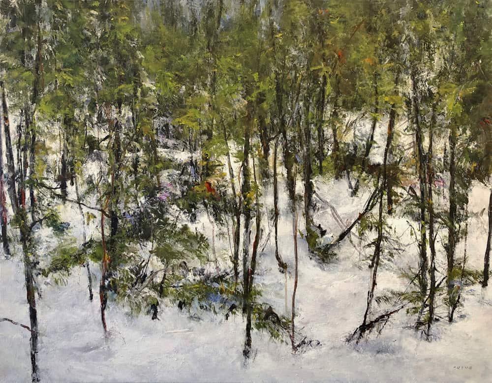 Judy Cheng Evergreen